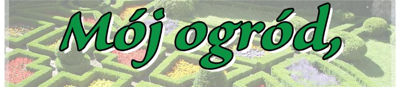 Mój ogród, Moja posesja - Wizytówką Gminy Zambrów Kliknięcie w obrazek spowoduje wyświetlenie jego powiększenia